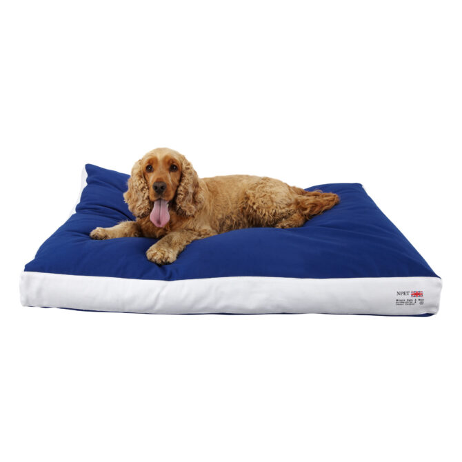 0067 17810 Blue Boxed Duvet With Dog 0067 0067